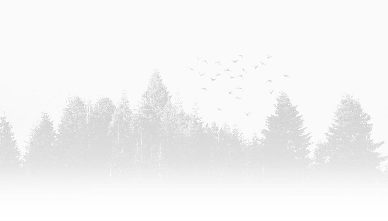 Landschaftsbild schwarz weiß